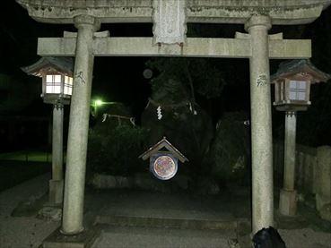 白山ひめ神社 G.2_R