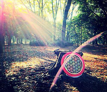 代々木公園A_R